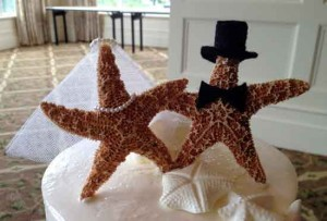 Cape Cod Starfish Wedding Couple